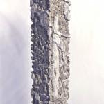 Woyie Column